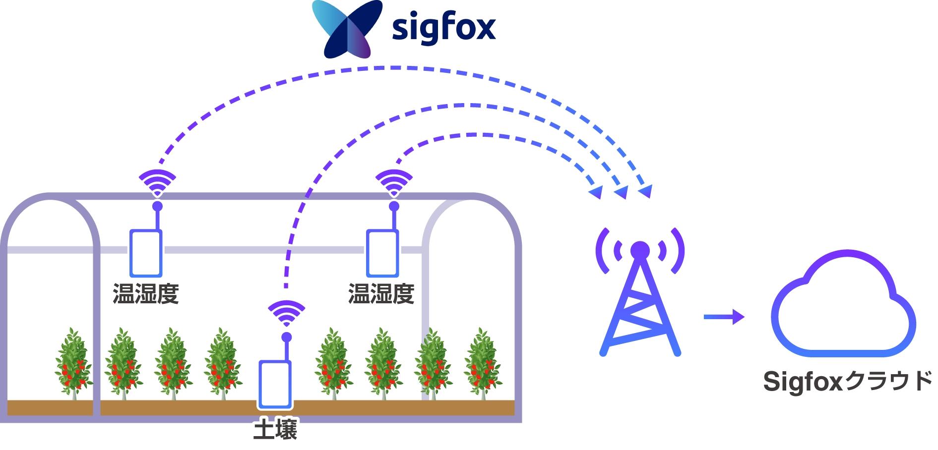 AI/IoTを活用した次世代施設園芸システム
