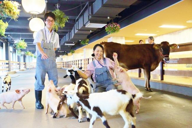 酪農特化型転職イベント「酪農リクルーティングフェア」、東京・大手町にて3月開催