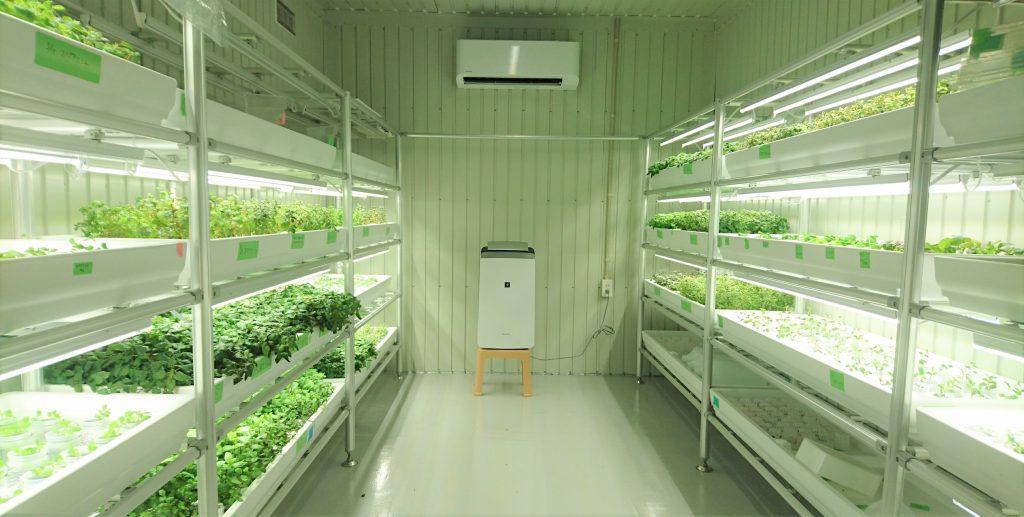 屋内農園型障がい者雇用支援サービス「IBUKI」、海老名市に新拠点を開設