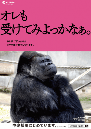 NTT西日本、イケメンゴリラを起用した中途採用交通広告「アニマル採用!?」制作