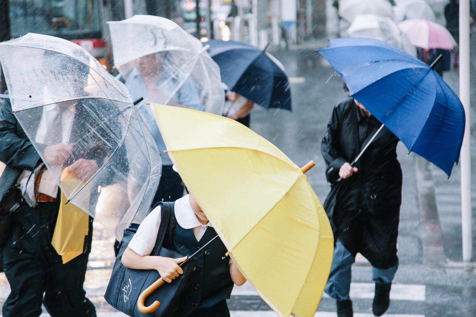 梅雨の不調は気象病のせい!梅雨の体調不良と対策について